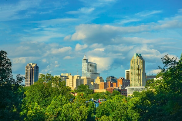 The Raleigh skyline with trees
